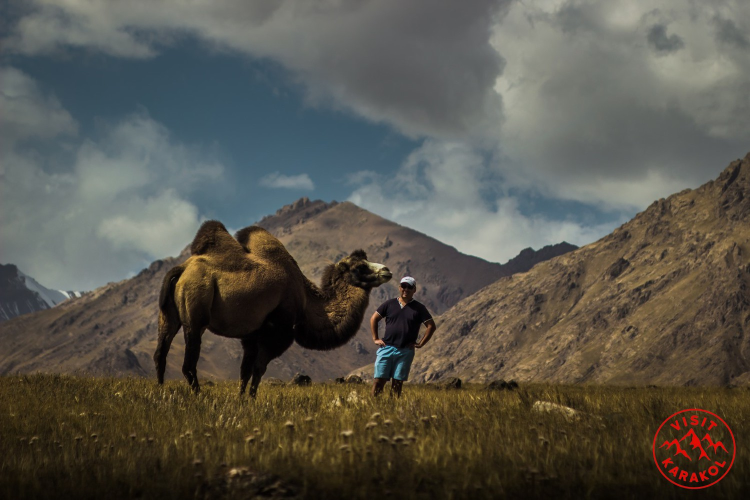 In Koiluu valley it is possible to see camels